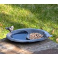 Bird baths, feeders and nests