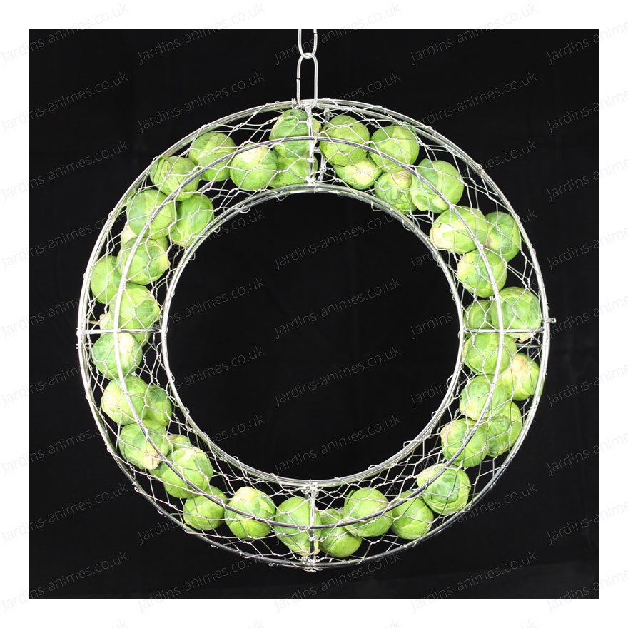 Circle decorative frame