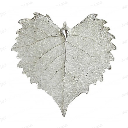 Cottonwood leaf - Silver