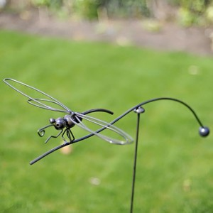Awesome Balancing Dragonfly