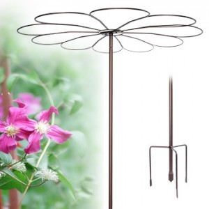 Daisy Umbrella shaped plant stake